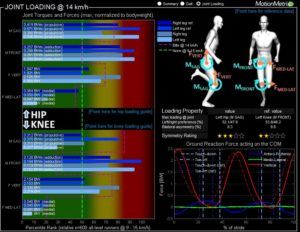 Joint loading Running Technique Analysis